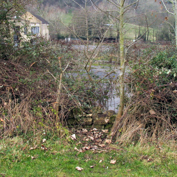 hole in the fencing adjoining field with public right of access: Freshford Mill